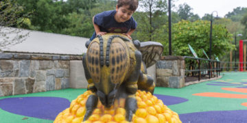 A boy at the Me and the Bee Playground at Smithsonian's National Zoo.