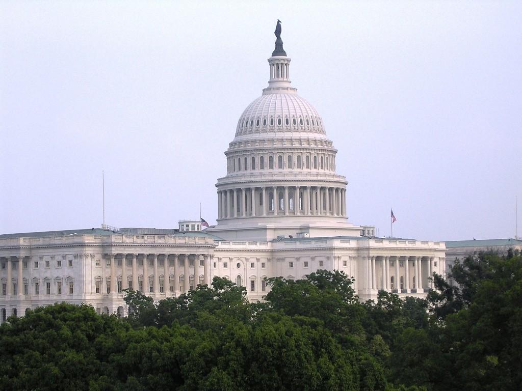The US Capitol, Washington, DC.
