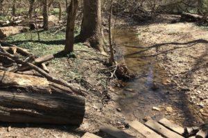 Glover Archbold Trail