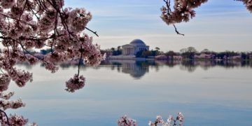 Tidal Basin, Washington, D.C.