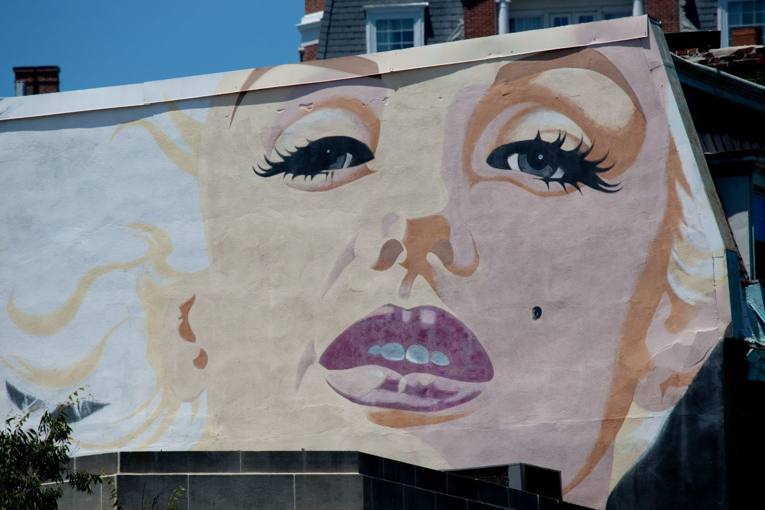 The Marilyn Monroe mural, on the corner of Calvert St. and Connecticut Ave. near the Woodley Park Metro station in DC
